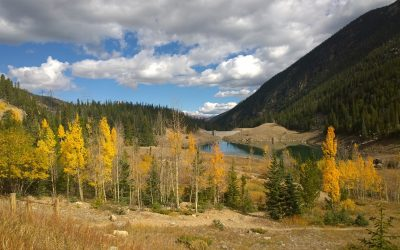 Mountain View, CO – A Prime Location for Real Estate Investors