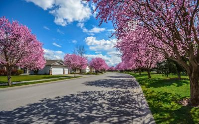 Denver Real Estate News: Prices Hit a High as Spring Selling Starts